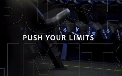 Primal Life Gym
